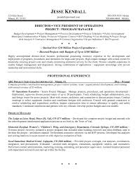 exle professional resume general investigator resume exlesl promotion operations