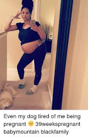 Being Pregnant Meme - dj even my dog tired of me being pregnant 39weekspregnant