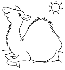 desert camel coloring page