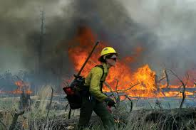 Wild Fires In Oregon State by Trial By Fire Trial By Fire U2014 High Country News
