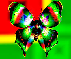 colorful butterflies colorful butterfly abstract design