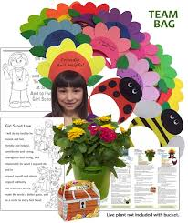 scout leader 411 blog welcome to the flower garden journey in a