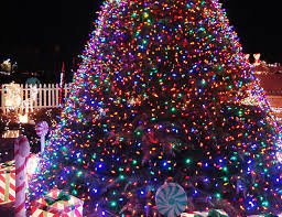 find your tree lightings
