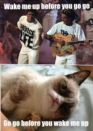 Grumpy Cat Coma Meme - grumpy cat vs wham cat memes pinterest grumpy cat cat and meme