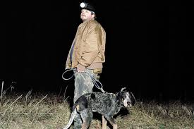 bluetick coonhound mix sale best hunting dogs gun dogs hunting dog breeds field u0026 stream