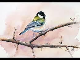 watercolor tutorial chickadee 427 best art tîps and tutorials animals images on pinterest