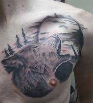 best 25 ideas about howling wolf find what you ll
