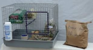 Rabbit Hutches For Indoors Baby Rabbits Indoor Pet Cages Outdoor Bunny Hutches And