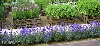 herb gardens planting tending harvesting and using your homegrown herbs