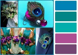 best 25 peacock colors ideas on pinterest about peacock pretty