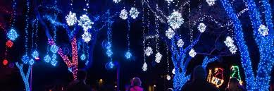 the lights festival houston 2016 moody gardens debuts 15th annual festival of lights and ice land