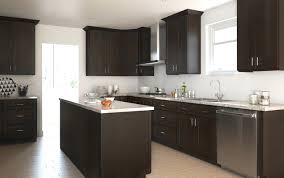 kitchen cabinets wholesale online assembled kitchen cabinets with sink near me fully online