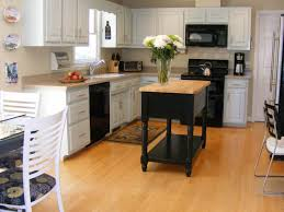 Paint My Kitchen Cabinets by Kitchen Cabinet Paint Colors Light Paint Colors For Kitchen