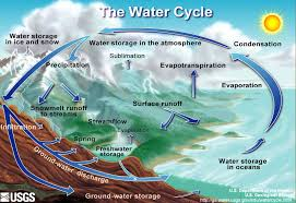 ms erhunmwunsee u0027s corner cycles of nature water carbon