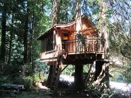 treehouse design app beautiful tree house designs treehouse