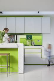 minimalist green kitchen cabinet with white combination relaxing