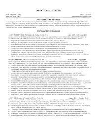 Sample Resume For Internal Auditor by 19 Sample Resume For Internal Auditor Example Of A Cover