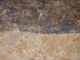 ceramic tile adhesive removal ceramic tile advice forums