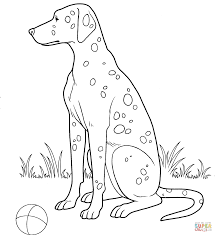 dalmatian coloring page free printable coloring pages
