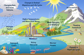 global warming causes and effects what cause global warming effect learning geology