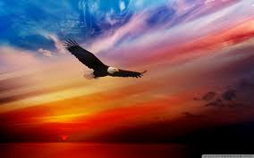 wallpaper of the day american freedom common sense evaluation