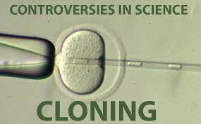 One Of The Biggest Controversies In Reproductive Medicine - controversies in science cloning brainscape blog