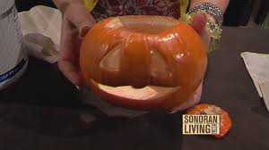 How To Make Halloween Pumpkins Last Longer - terri o shares how to preserve your carved pumpkin this season