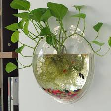 Goldfish In A Vase Compare Prices On Hanging Glass Bowl Online Shopping Buy Low