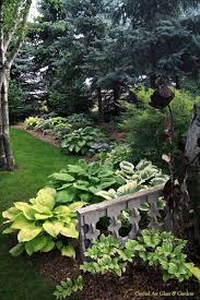 31 best shade gardens images on pinterest gardening landscaping