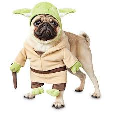 costumes for dogs wars yoda illusion dog costume dog war dogs and dog