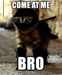 Come At Me Bro Meme Generator - come at me bro ninja kitten meme generator
