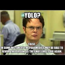 Yolo Meme - the best yolo memes ever