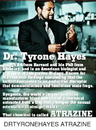 Drr Drr Drr Meme - drr tyrone haves dic s ba from harvard and his phd from berkeley and