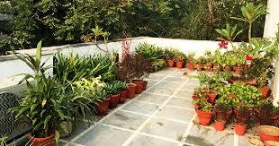 terrace gardening want to make a mini garden on terrace check these garden lover