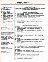 resume samples professional summary gallery of 10 career summary sample resume sections professional