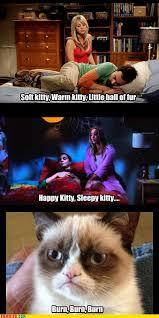 Soft Kitty Meme - not so soft kitty web comics 4koma comic strip webcomics web
