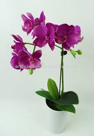 silk orchids artificial flower potted silk orchids flower buy silk orchid