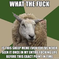 Fuck Life Meme - what the fuck is this sheep meme even for ive never seen it once in