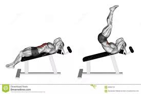 Leg Lift Bench What Is A Fool Proof Ab Exercise Updated 2017 Quora
