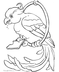 free printable parrot coloring pages birds coloring home