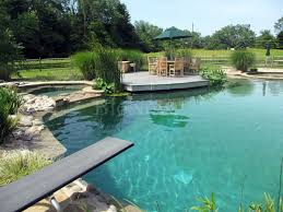 Natural Swimming Pool New Jersey Bionova Natural Swimming Pools Pool Pinterest