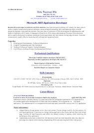 New Format Resume Standard Format Resume