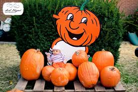 pumpkin patch maternity baby khizr newborn photo session pumpkin patch a s nagpal