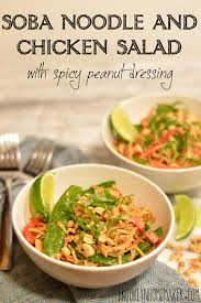 noodle and chicken salad with spicy peanut dressing brooklyn