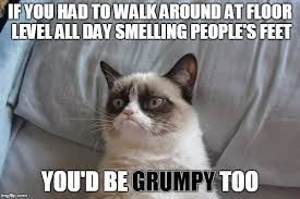 Bed Meme - grumpy cat bed meme generator imgflip