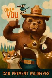Smokey The Bear Meme - smokey bear only you halftone red lantern press artwork i