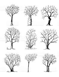 hand drawn trees isolated sketch stock vector art 491921336 istock