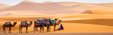 best morocco tours vacations travel packages 2018 2019 zicasso