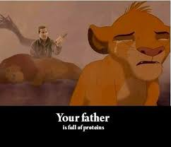 The Lion King Meme - your father is full of protien the lion king know your meme