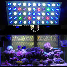 led reef lighting reviews review of ocean revive evergrow led lights for reef aquariums my